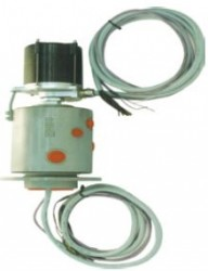 HBS - D100080104 YAĞ DAĞITIM MERKEZLERİ (BEYİNLER)