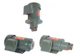 CHEN YING - CEN01-04 tip vertical motor + TOP pompa